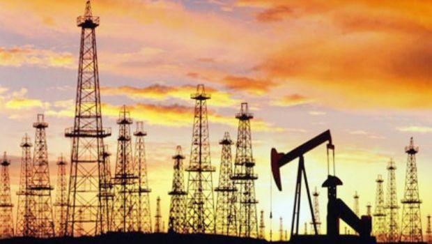olajmező