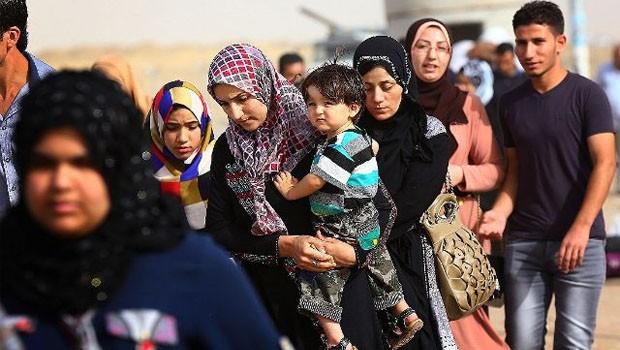 menekültek 342