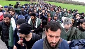 menekültek 321