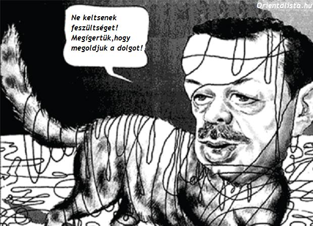 erdogan cica karikatúra