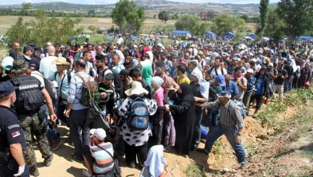 menekültek 323