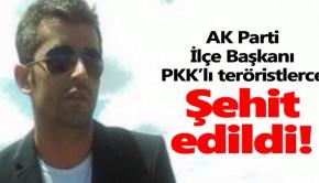 akp politikus gyilkosság kurdok