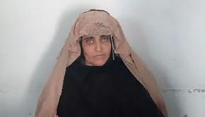 afgan-lany-2