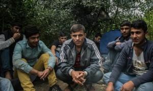 afgan-menekultek-szerbia