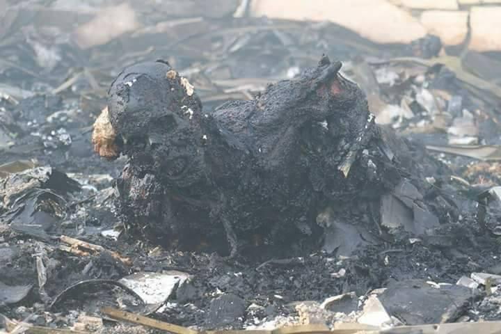 jemen-elszenesedett-testu
