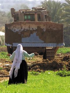 izraeli-buldozer-2
