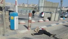 palesztin-fiu