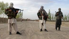 talibok-afgan