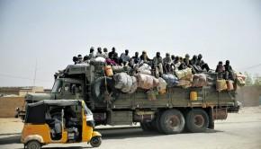 menekultek-afrika