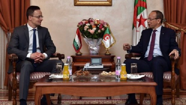 szijjarto-algeria-3